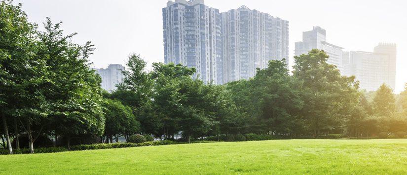 האם השקעה בבנייה ירוקה כדאית כלכלית?